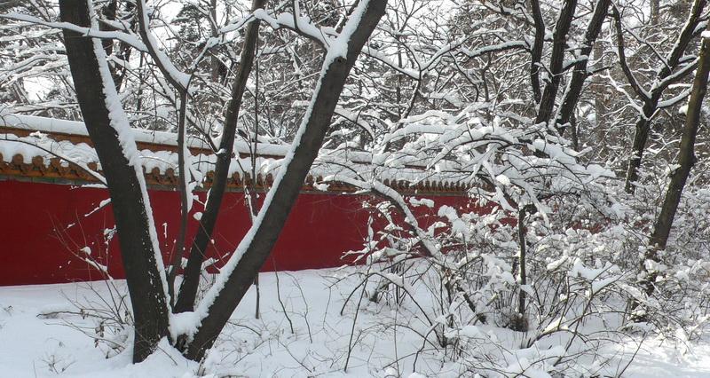 [转载]沈阳的冬天