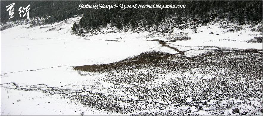 一尺厚的雪下是馒头包似的白色小土堆,从田野的这一头一直错落到青稞