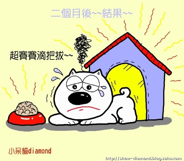 小呆猫可爱漫画~小呆猫台北搬家故事(二)