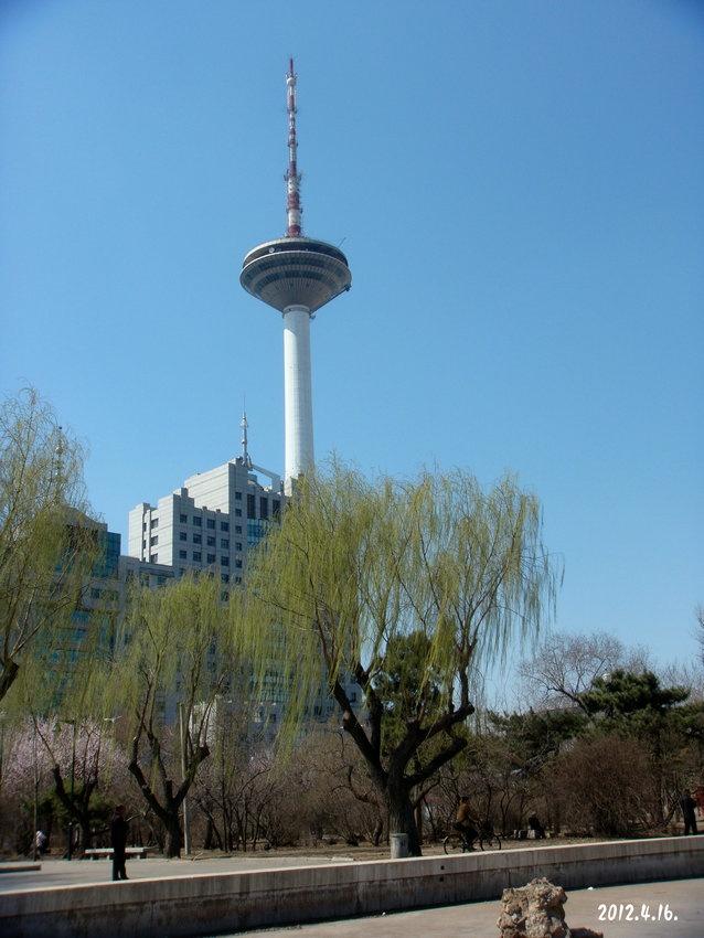 从青年公园看沈阳彩电塔