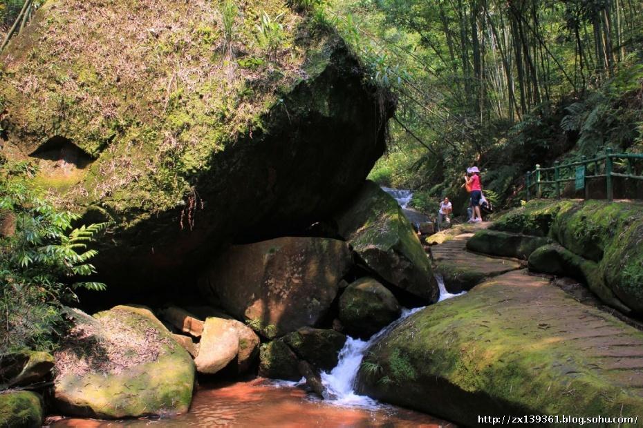 上午游览四洞沟景区,它离赤水市区最近,山路较平缓.