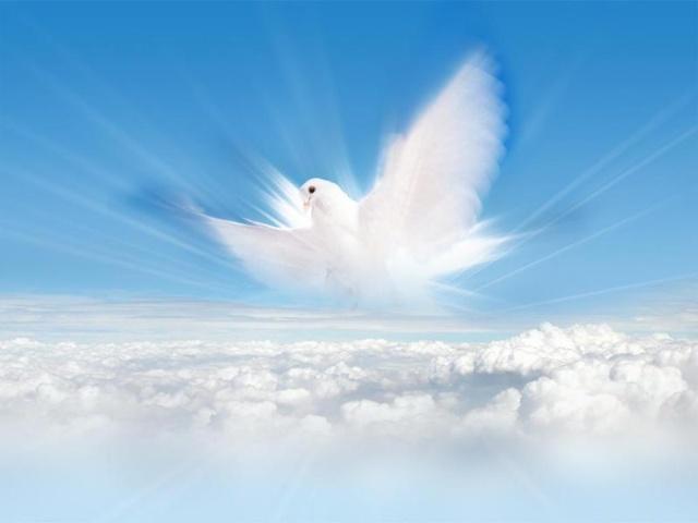 上帝是三位一体 圣父是万有之源造物之主