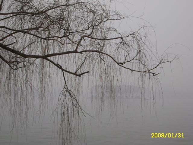 大明湖是济南市的著名风景区.早在西汉时期济南就是行政中心.