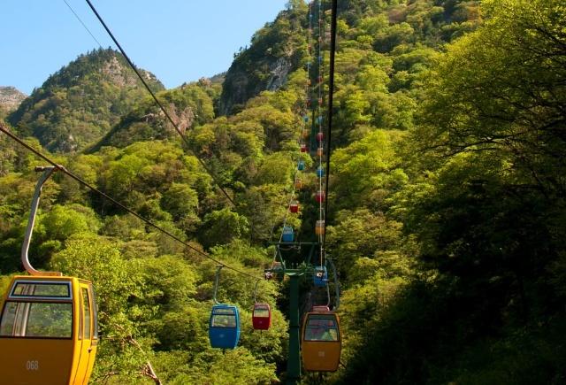 【老闲游记】杜鹃花开秦岭山----朱雀森林公园