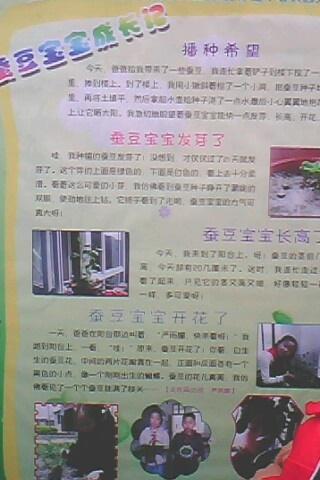 科技小论文一等奖,种植日记照片展板展示